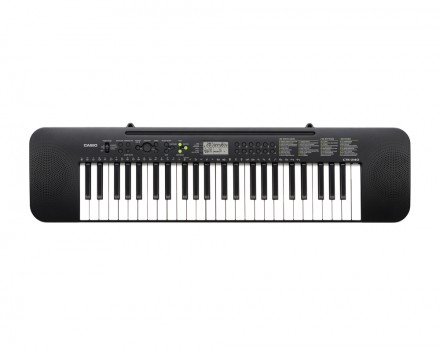 Синтезатор Casio CTK-240: фото